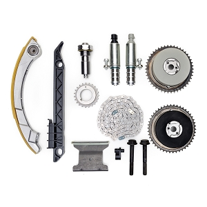 Ecotec Timing Chain & Guide Set For VVT Engines